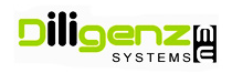Diligenzme Systems logo