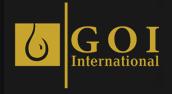 GOI International DMCC logo