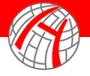 Halai Trading Company LLC logo