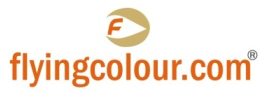 Flying Colours Real Estate & Business Setup Services logo