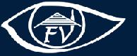 Future View Real Estate logo