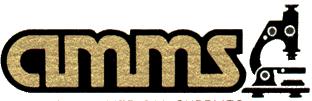 Al Mashriq Medical Supplies LLC logo