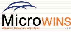 Microwins LLC logo