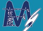 Merit Freight Systems Company LLC logo