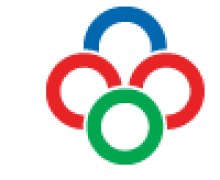 Emirates Honing LLC logo