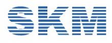 SKM Sofware FZE logo
