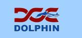 DOLPHIN CONSTRUCTION COMPANY WLL logo