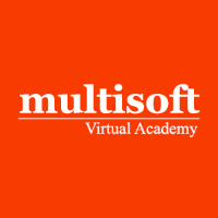 Multisoft Virtual Academy logo