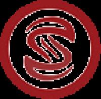 savvysetup logo