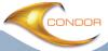 Condor Building Contracting Company LLC