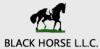 Black Horse Company LLC