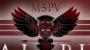 Minerva Special Purpose Vehicles LLC