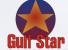 Gulf Ocean Electronics LLC