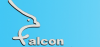 FALCON AUTOMATIC DOOR SYSTEMS